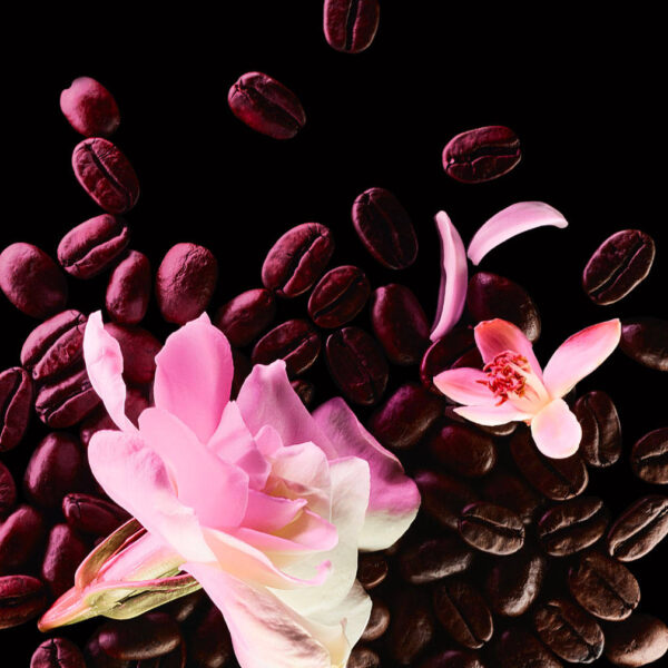 YVES SAINT LAURENT Black Opium Floral Shock